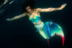 Анастасия Слободчикова: «С акулами уже «делила акваторию», теперь мечтаю о косатках»