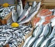 Около 20 тонн сомнительной рыбы обнаружили на складе во Владивостоке