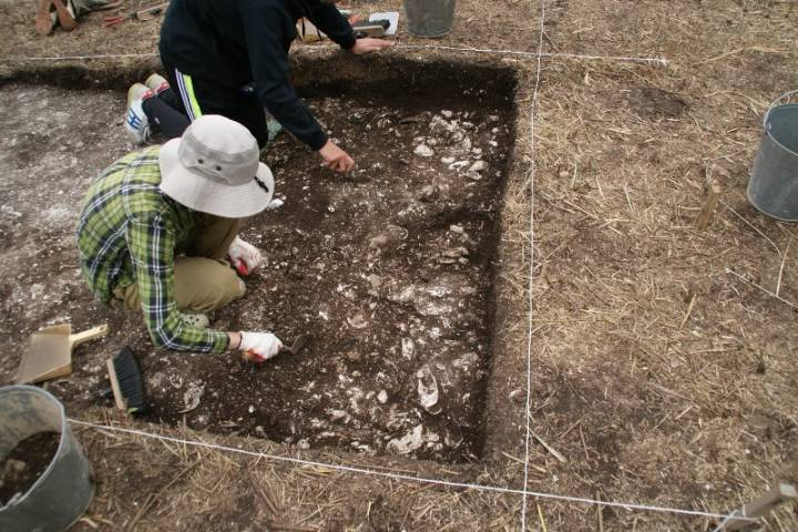 Новые памятники археологии обнаружили в Приморье