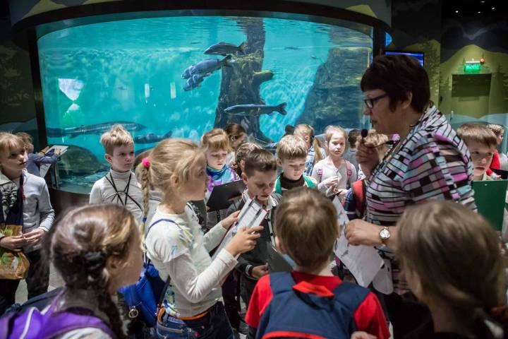 Последние открытые уроки проходят в Приморском океанариуме