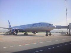 Boeing-777 с Пушкаревым на борту приземлился в Москве