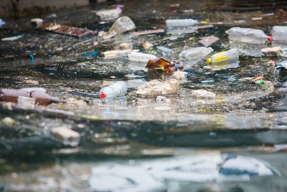 Жители Владивостока вышли на очистку бухты Золотой Рог