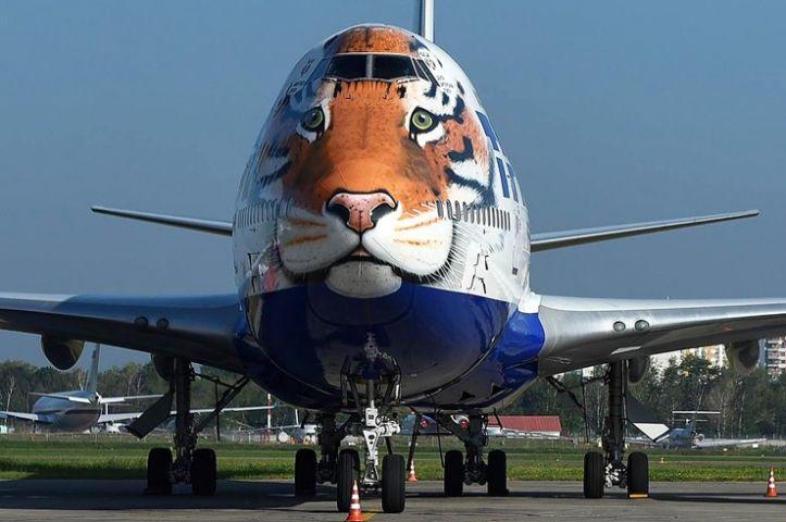Самолет с изображением амурского тигра вошел в список самых красивых лайнеров