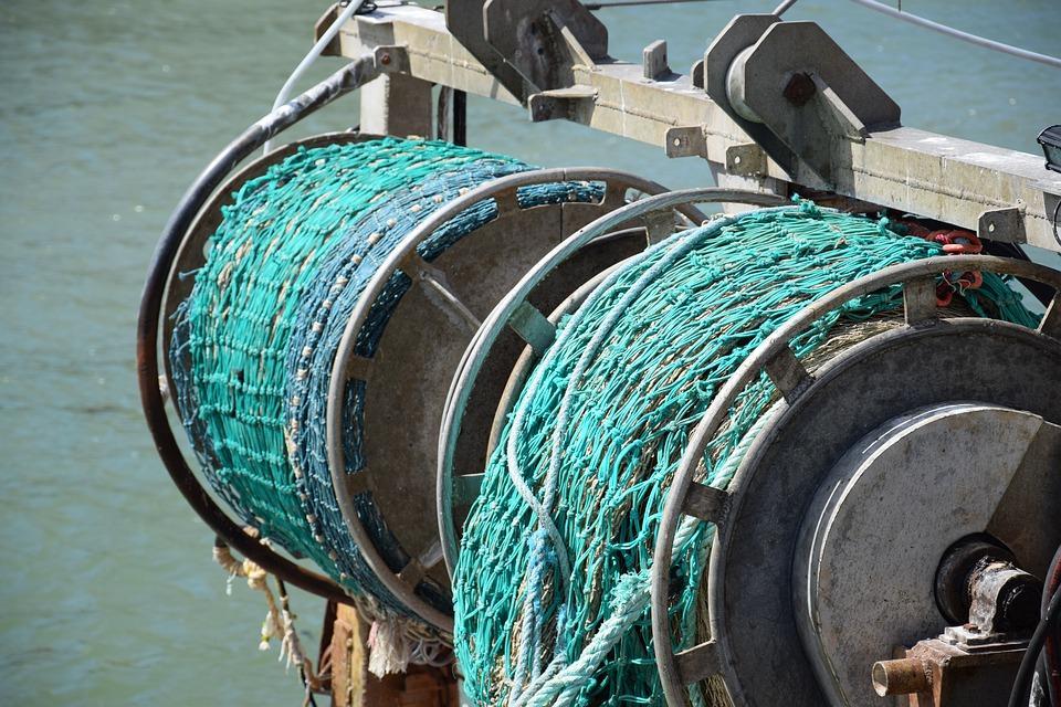 В Приморье рыбаки увеличили вылов камбалы и трески