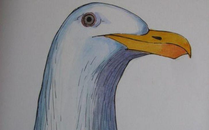Художники из Владивостока удивили организаторов всероссийского конкурса оригинальностью идеи