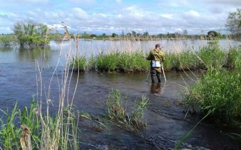 Озеро Ханка продолжает «наступление» на Приморье