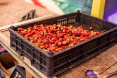 Фермеры Приморья рассказали, как отличить местную клубнику от китайской