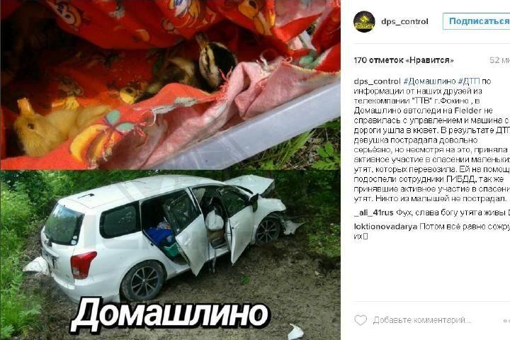 В Приморье машина с утятами улетела в кювет