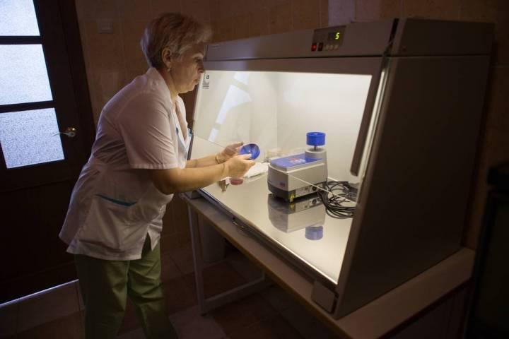 Первый случай клещевого энцефалита зафиксирован в Приморье
