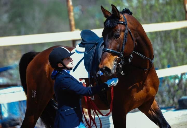 Соревнования по конному спорту пройдут в Приморье