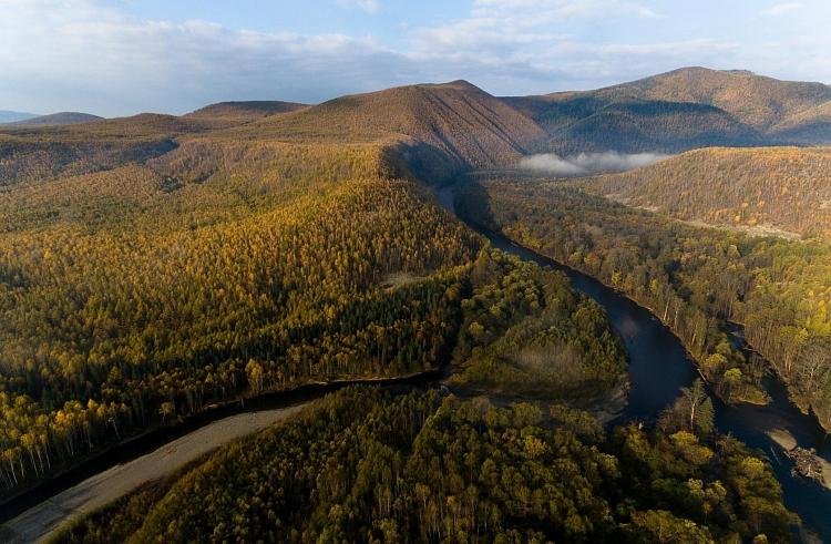 Приморский парк включили в список Всемирного наследия ЮНЕСКО
