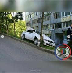 Во Владивостоке иномарка «обняла» дерево