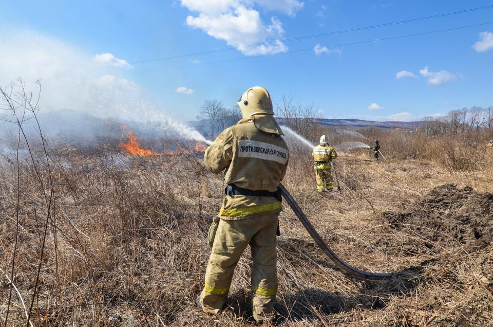На борьбу с лесными пожарами в Приморье дополнительно направят 150 млн рублей