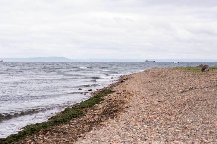 На пляжах Владивостока полицейские разгоняют «веревочников»