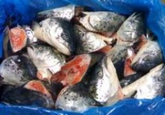 Крупную партию просроченной рыбной продукции изъяли во Владивостоке