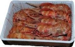 Опасными морепродуктами кормили приморцев
