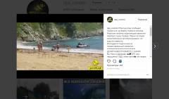 Жители Приморья сами убрали тушу мертвой ларги с пляжа
