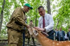 Приморский сафари-парк получит субсидии на развитие инфраструктуры