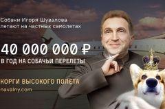 Куратор строек АТЭС Шувалов тратит 40 млн рублей в год на самолет для перевозки собак