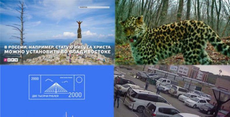 Позитив недели: недовольный леопард, феерический угонщик, битва за купюру и статуя Иисуса во Владивостоке