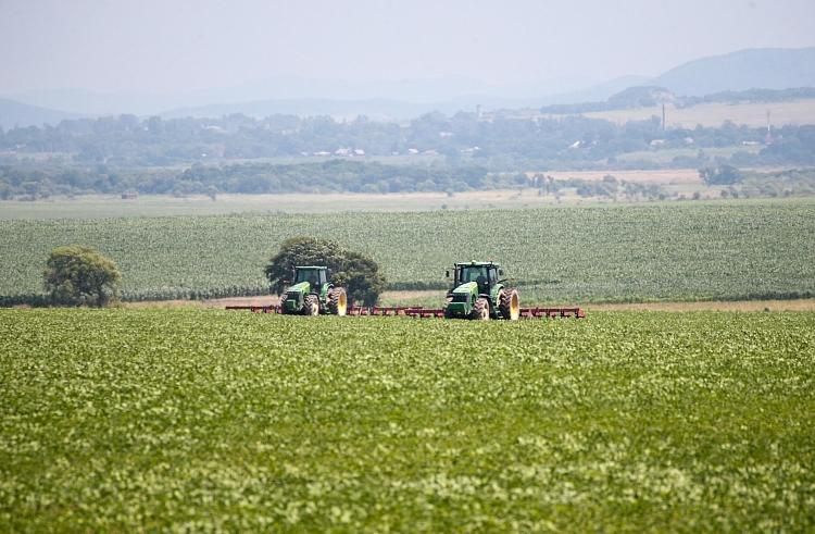 Более 11 тысяч человек из разных регионов России получили дальневосточный гектар в Приморье