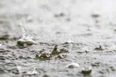 Синоптики по-прежнему не исключают дождь вечером во Владивостоке