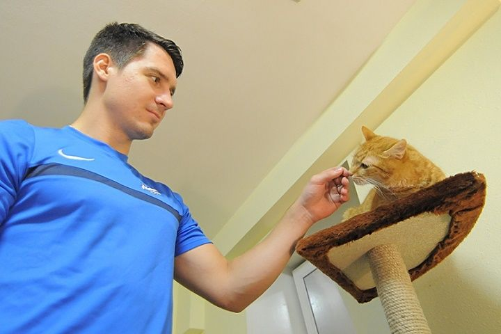 Наследство кошки Матроски подарили фонду «Умка»