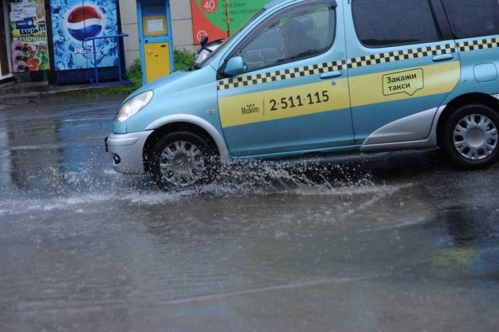 Жители Владивостока сами задержали таксиста, сбившего собаку во дворе