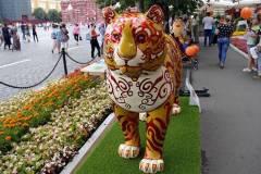 «Парад диких кошек» пройдет во Владивостоке во время ВЭФ