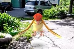 Поклонник Pokemon Go: «Пробки во Владивостоке помогли прокачаться до десятого уровня»
