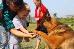 Приморских ребят учат ладить с собаками