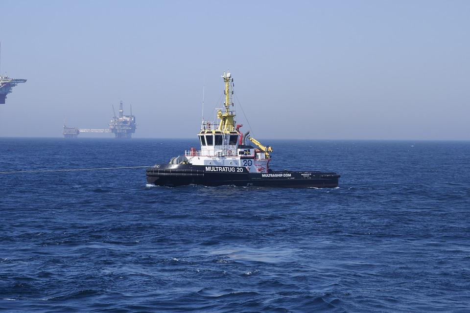 Приморские рыбаки выловили 15 тысяч тонн кальмара