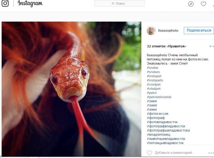 Владивосток в Instagram: рисунки на теле, неподдельные эмоции и змея по имени Олег