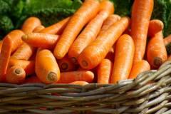 Опасной морковью кормили детей в Приморье