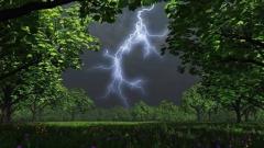 Синоптики дали очередной неутешительный прогноз для Приморья