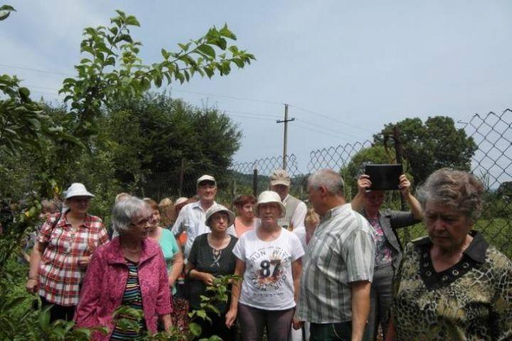 Персики и абрикосы начнут выращивать во Владивостоке