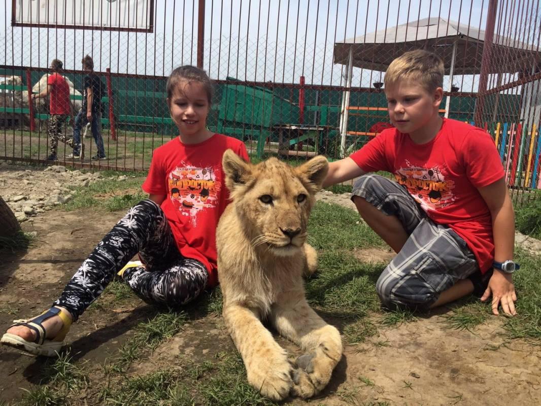 Жители Приморья играют со львами и с тиграми, словно с котятами
