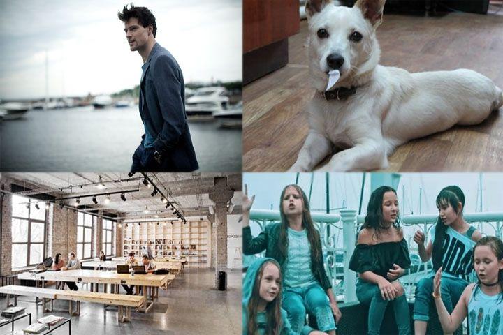 Позитив недели: детское «Евровидение», День тигра и Данила Козловский