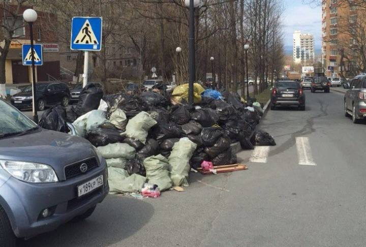 Приморцы обсудят вопрос утилизации мусора с японцами