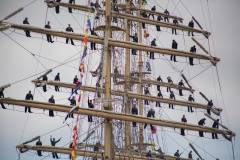 «Почти кругосветка»: парусное судно «Надежда» вернулось в родной порт Владивосток