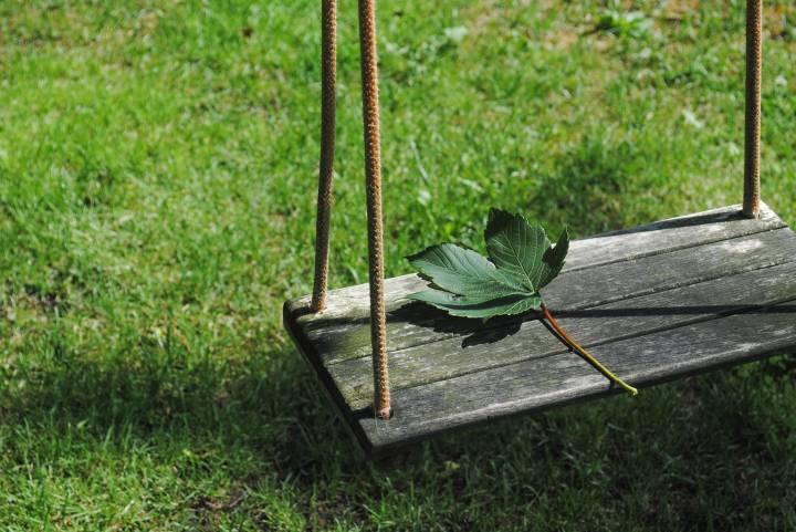 Опасное растение обнаружили на территории детского сада в Приморье