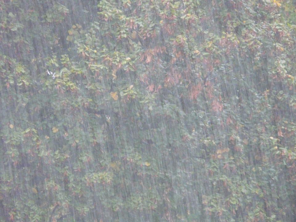 Мощный ливень обрушится на Владивосток с минуты на минуту