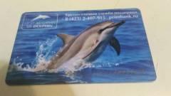 «Дельфин» уходит из Приморья