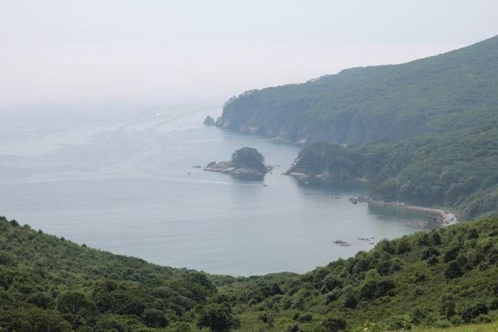 Заповедник в Приморье опроверг информацию о загрязнении бухты Теляковского