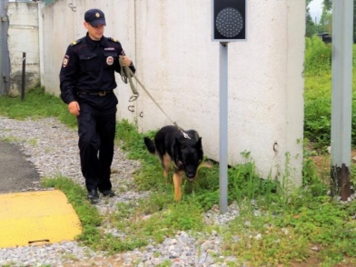 В Приморье служебная собака вывела полицейских на след разбойника