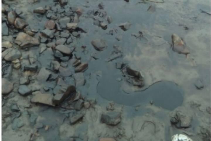 В акватории Амурского залива замечен сильный разлив нефтепродуктов