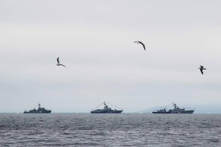 Министр экологии поручил усилить экологический контроль в бухте Золотой Рог