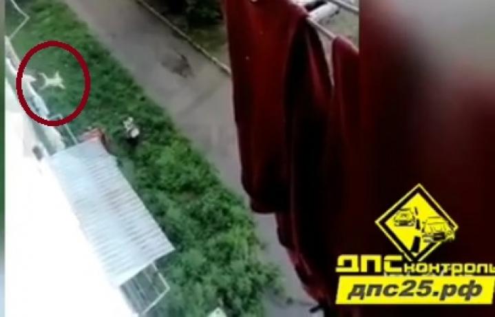 В Приморье из окна пятого этажа выпал ребенок