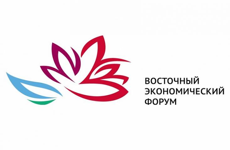 Во время ВЭФ на острове Русском будет действовать ряд ограничений