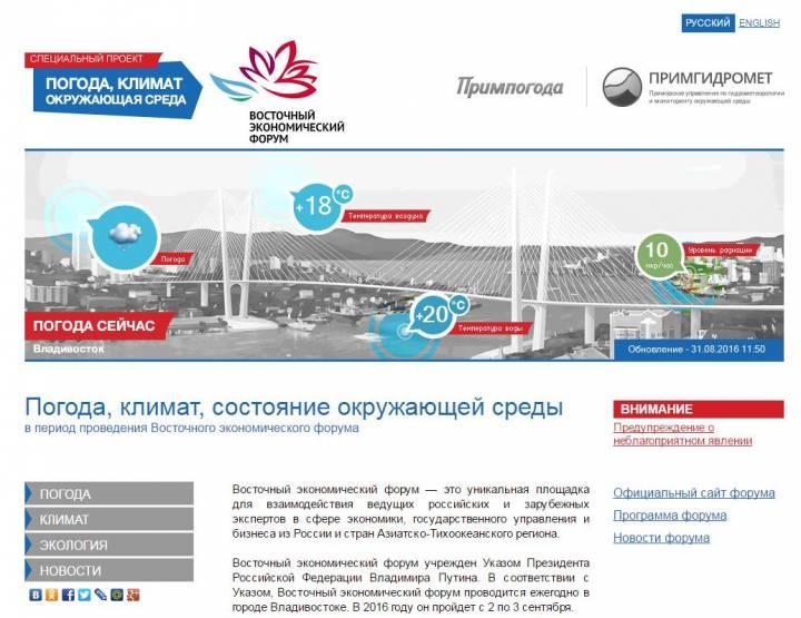 Сайт о погоде для участников ВЭФ создали в Приморье
